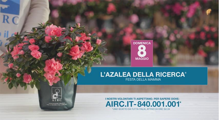 airc 2016 2